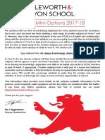 Year 8 Mini-Options 2017-18
