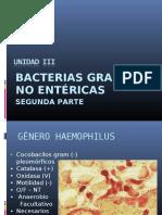 Bacilos Gram No Entericos II (1)
