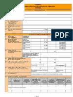Directiva 010-2017 - Formatos_de_resumen Ejecutivo