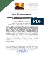 Manifestações Patológicas Em Ponte Rodoviária Localizada Em Ambiente Salino Na Cidade de Braganç