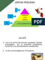 PRESENTACION CONSTITUCION Y DD.HH.pdf