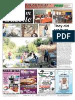 Platinum Gazette 12 May 2017