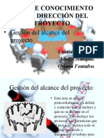 Área de Conocimiento de La Dirección Del Proyecto Expo