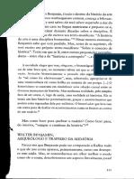 DIDI-HUBERMAN_extrato Imagem malícia_in Diante do tempo