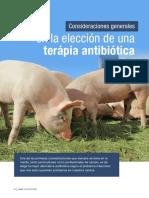 Consideraciones generales en la elección de una terapia antibiótica