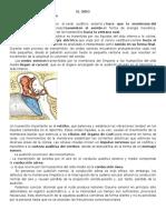 EL OIDO.docx