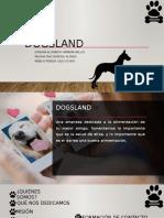 Presentación dogsland