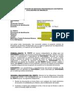 PLANTILLA+PERITOS (1)
