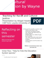 hasebroock facilitation- rethinking multicultural education  teaching for racial and cultural justice