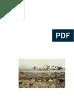 118-160-2-PB.pdf