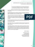 prostata_cuidados.pdf