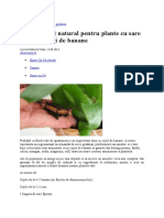 Casa Si Gradina - Ingrasamant Natural Pentru Plante Cu Sare Epsom Si Coji de Banane