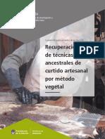 curtidoArtesanal_vegetal.pdf