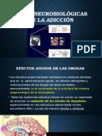 Bases Neurobiológicas de La Adicción