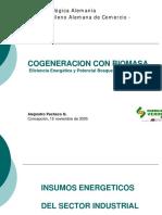 Cogeneracion Biomasa.pdf