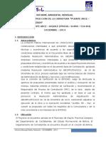 Informe Ambiental Diciembre