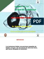 04 - Inclusiones fluidas