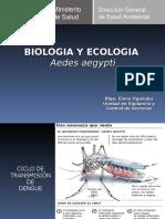 Biología y Ecología de Aedes Aegypti