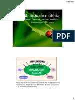 Distribuição de matéria1 (1).pdf