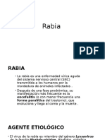 Rabia infectologia