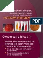 Metabolismo.2.1445337877