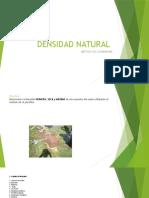 DENSIDAD NATURAL.pptx