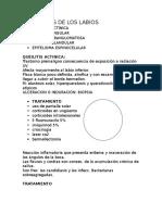 AFECCIONES DE LOS LABIOS.docx
