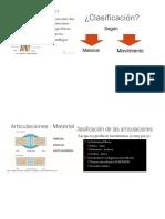 anatomia de articulaciones.docx