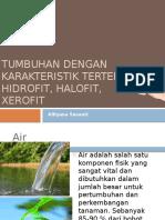 Tanman Hidrofit, Higrofit, Dan Xerofit