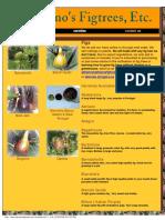 282262347-Adriano-Figs.pdf