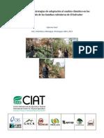 Final-Report-Vulnerability-CUP-ES-2012.pdf