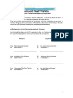Acta Constitucion Comite