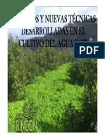 Estudios Realizados en El Aguacate