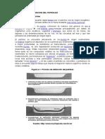 Informe- Petroleo y Sus Derivados