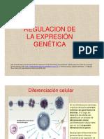 19-regulacion.pdf