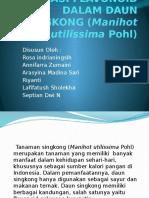 ISOLASI FLAVONOID DALAM DAUN SINGKONG (Manihot utilissima.pptx