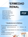 Enfermedad Renal.