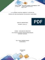 243003_Guía de Laboratorio