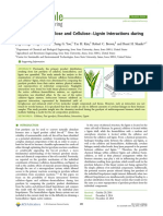 2014 Cellulose−Hemicellulose and Cellulose−Lignin Interactions during