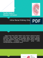 Intra Renal Kidney Disease