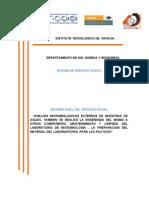 Guia de Informe Fina Luis