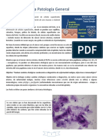 Clase 2 - Citologia Exfoliativa, Tinciones y Etiologia General