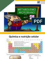 Aula 03 Metabolismo microbiano.pdf