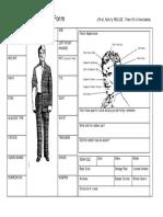 Suspect Description Form(1)