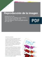 Reproduccion de La Imagen 2017