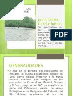 Estuario Rio Muisne