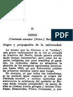 Origen Del Oidium