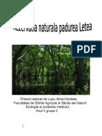 Rezervatia Naturala Padurea Letea