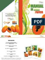 Manual Papaya