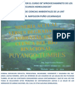 CONTAMINACION+CUENCA+ALTA+RIO+PUYANGO+TUMBES